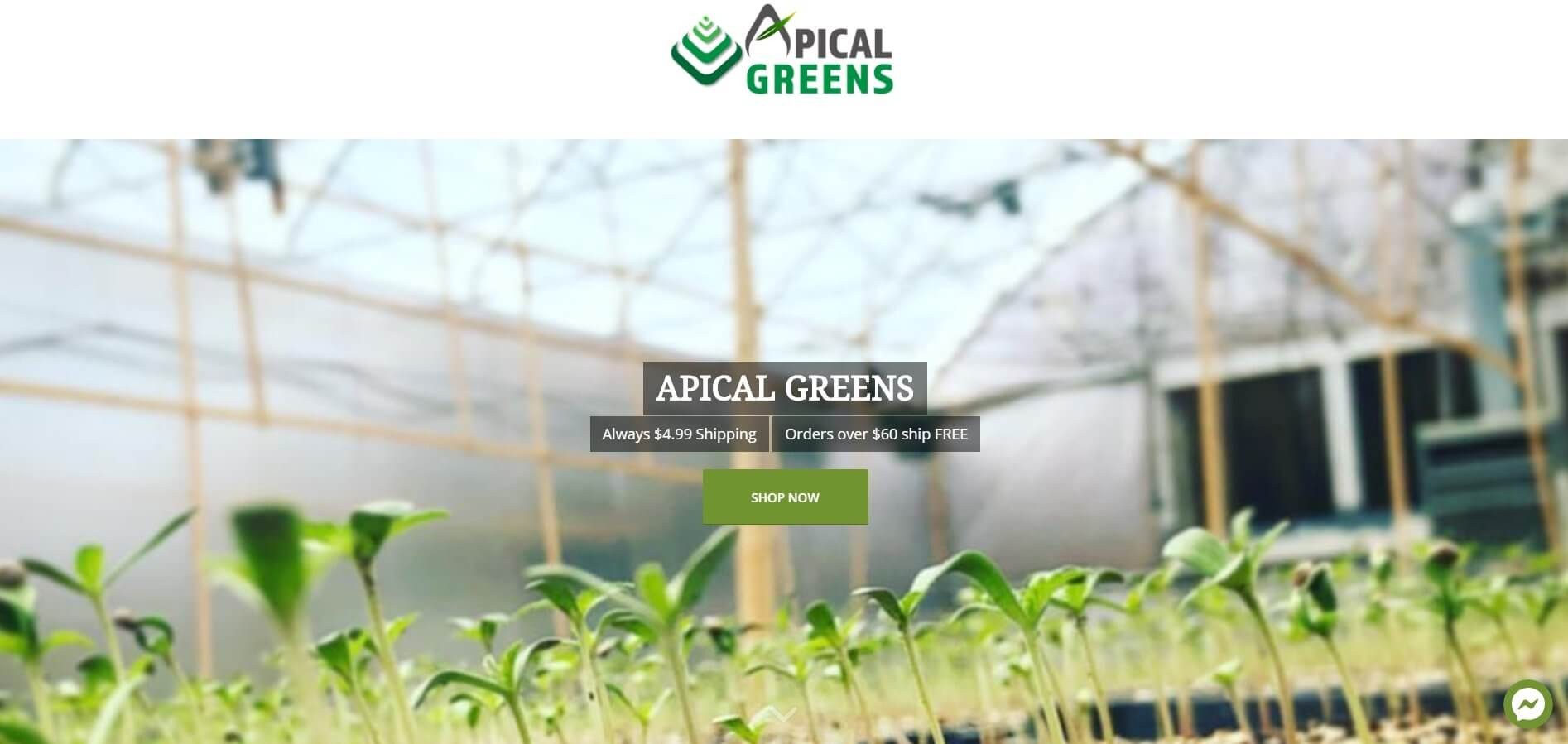 Valley List Welcomes – Apical Greens