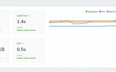 Monitoring Your SEO – Screpy AI-Based Website Analysis